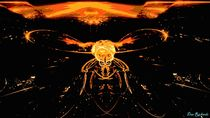 'Firefly' by Dan Richards