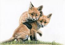 Fuchskinder - Fox Kids by Nicole Zeug