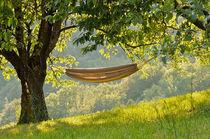 relax - einfach abhängen! by Thomas Matzl
