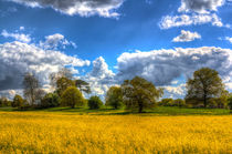 The Springtime Farm by David Pyatt