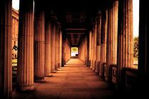 Columns by Glen Mackenzie