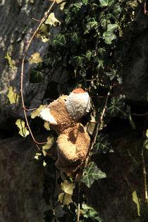 Bären-Tarzan von Olga Sander