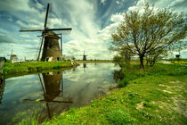 Kinderdijk Reflections  by Rob Hawkins