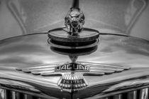 Classic Jaguar Car by David Pyatt