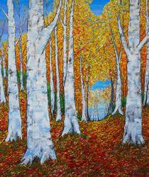 Birkenwald im Herbst by Eberhard Schmidt-Dranske