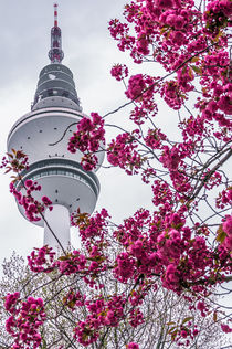 Hamburg im Frühling VIII von elbvue von elbvue