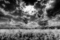 The Storm Over The Farm von David Pyatt