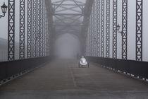 Hamburg im Nebel by Susanne Schröder
