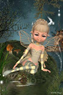 Star Fairy von Toni Jonckheere