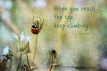 Zen Proverb by Clare Bevan