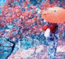Blossom by Amanda Jones
