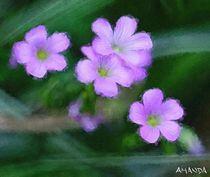 Full Bloom by Amanda Jones