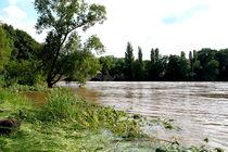 Hochwasser II von langefoto