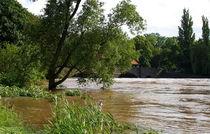 Hochwasser III von langefoto