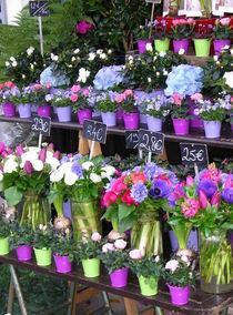 Flower stall von Fliss Clooney