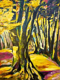 Buchenwald im Herbstlicht by Eberhard Schmidt-Dranske