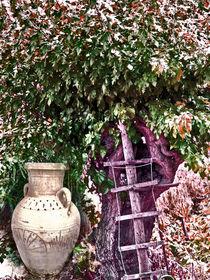 Vasenfragment an der Leitersprosse by Gabi Kaula