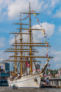 Hamburger Hafengeburtstag 2015 III von elbvue von elbvue