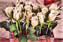 Weiße Rosenblüten by Gabi Kaula