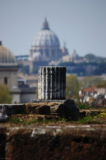 Rome ... eternal city VI by meleah