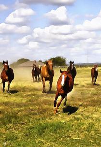 Quarter-horses-dap-re-acrylic