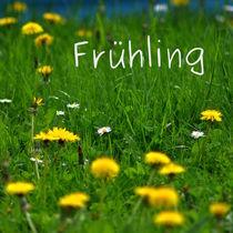Frühling von Irmtraut Prien