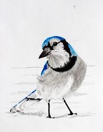 'Blauhäher' von Condor Artworks