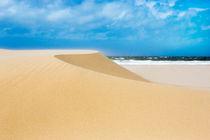 Sand Dunes von David Hare