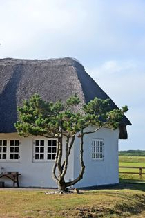 Bauernhaus by Ute Bauduin
