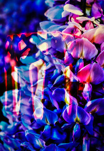 Blühende Fantasie 2 by Walter Zettl