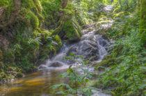 Wasserfall-hdr