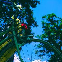 Fahrrad Nostalgie von li-lu