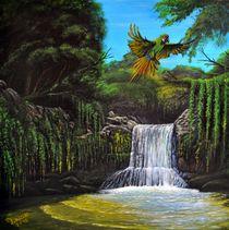 Am Wasserfall von Peter Schmidt