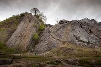 Dinas Rock by Leighton Collins