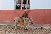 Mann und Esel von julia-go