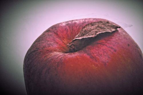 Apfel-005l-farbspiel
