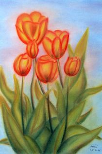 Tulpen in Pastell by konni