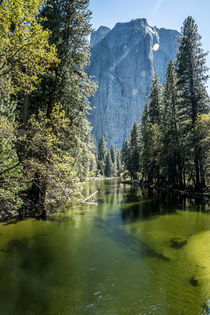 Yosemite Natural park von Stephane AUVRAY