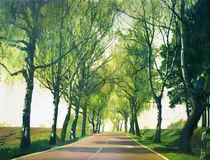 Frühlingsweg by Renée König