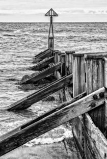 Groynes at Seaton Sluice by David Pringle