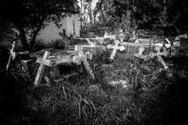 Derelict Crosses von David Hare