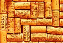Every Which Way Rioja by Clare Bevan