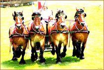 Pferdestärken  von Sandra  Vollmann