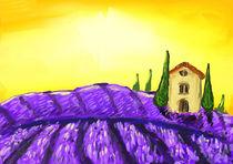 Lavendelfeld von fuchsmithut