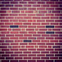 Bricks In The Wall by Cinthya Leite