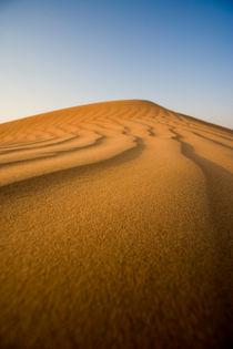 Wüste by Helge Reinke