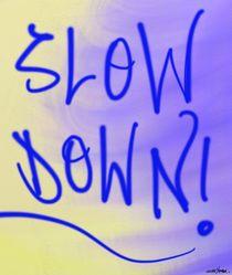 Slow Down von Vincent J. Newman