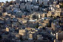 Amman von Helge Reinke