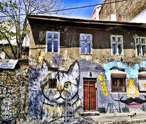 Graffiti On The Wall ~ by bebra von bebra