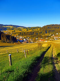 Pfad hinab ins Dorf | Landschaftsfotografie by Patrick Jobst